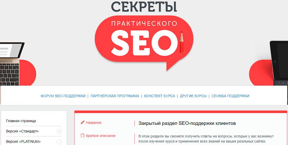 Видеокурс продвижение сайта ссылками seo продвижение сайтов красноярск
