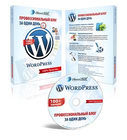 Заработок в Интернете. WordPress - профессиональный блог за один день